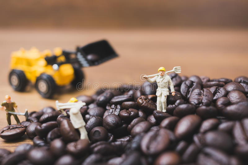Miniature people working on roasted coffee beans. Close up Miniature people working on roasted coffee beans royalty free stock photos