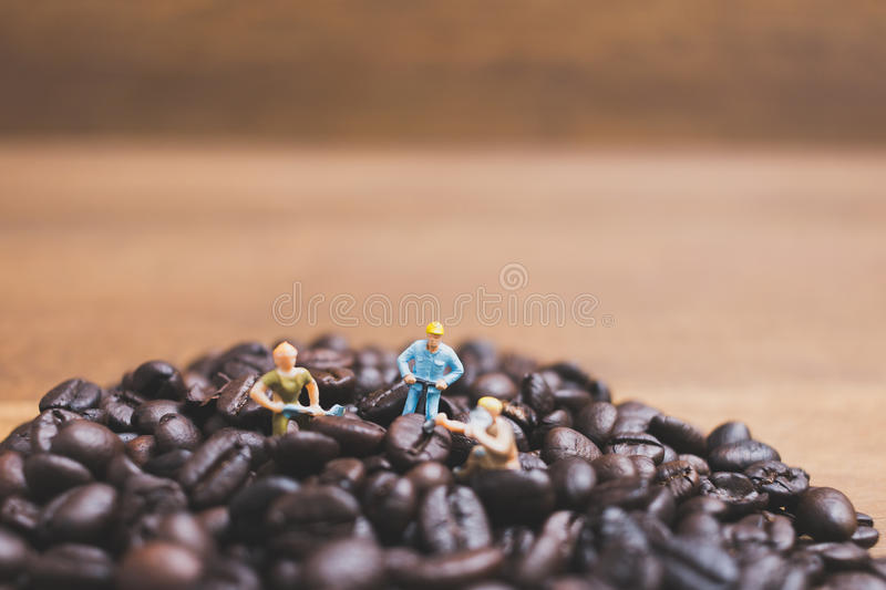 Miniature people working on roasted coffee beans. Close up Miniature people working on roasted coffee beans royalty free stock image