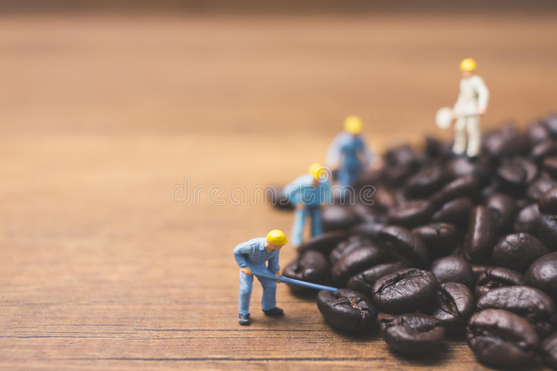 Miniature people working on roasted coffee beans. Close up Miniature people working on roasted coffee beans stock images