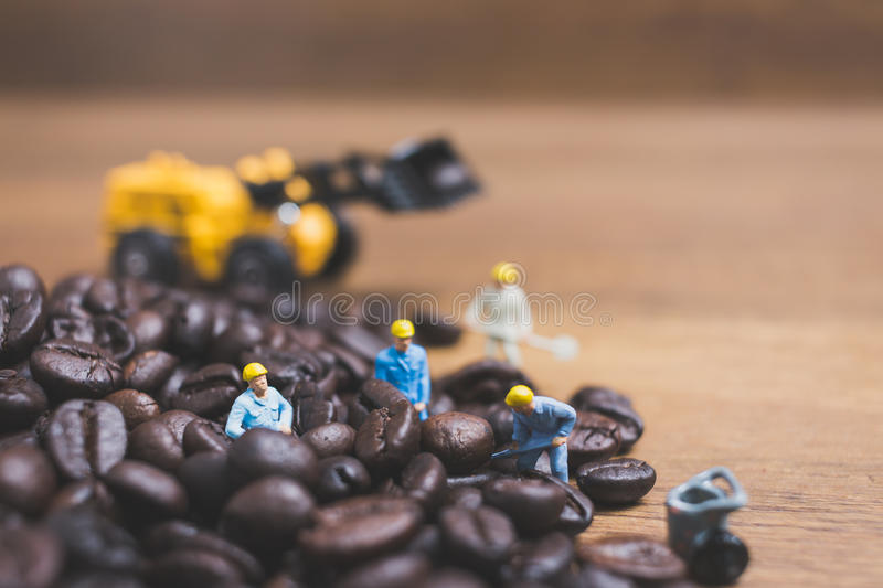 Miniature people working on roasted coffee beans. Close up Miniature people working on roasted coffee beans stock photo