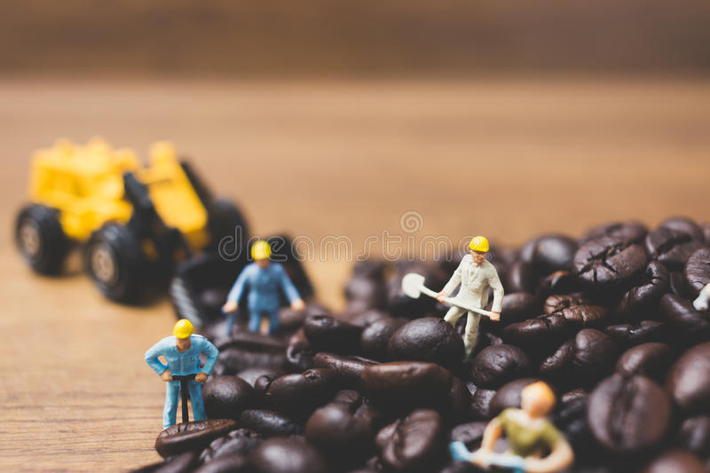 Miniature people working on roasted coffee beans. Close up Miniature people working on roasted coffee beans stock image