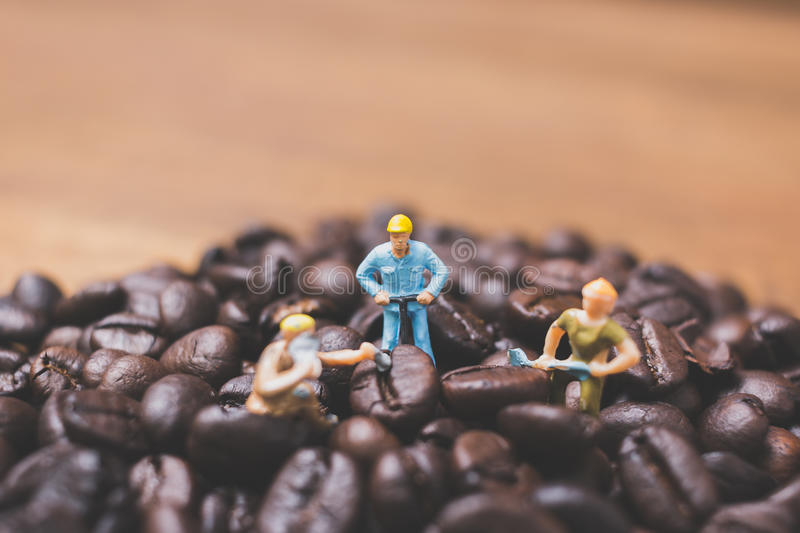 Miniature people working on roasted coffee beans. Close up Miniature people working on roasted coffee beans stock photography