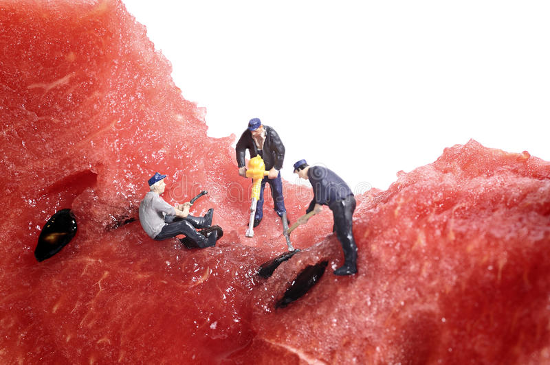Miniature peoples work on water melon royalty free stock photos
