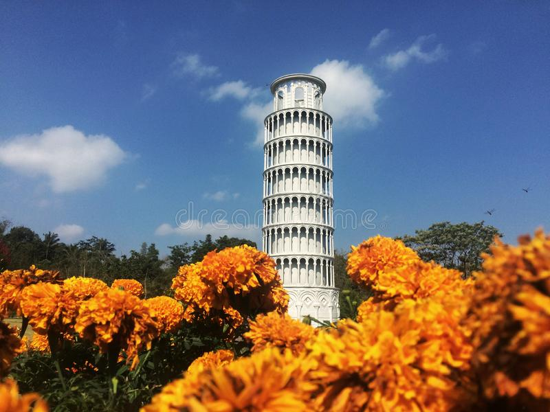 Miniature pisa tower in the garden. With yellow flowers and the blue sky background royalty free stock images