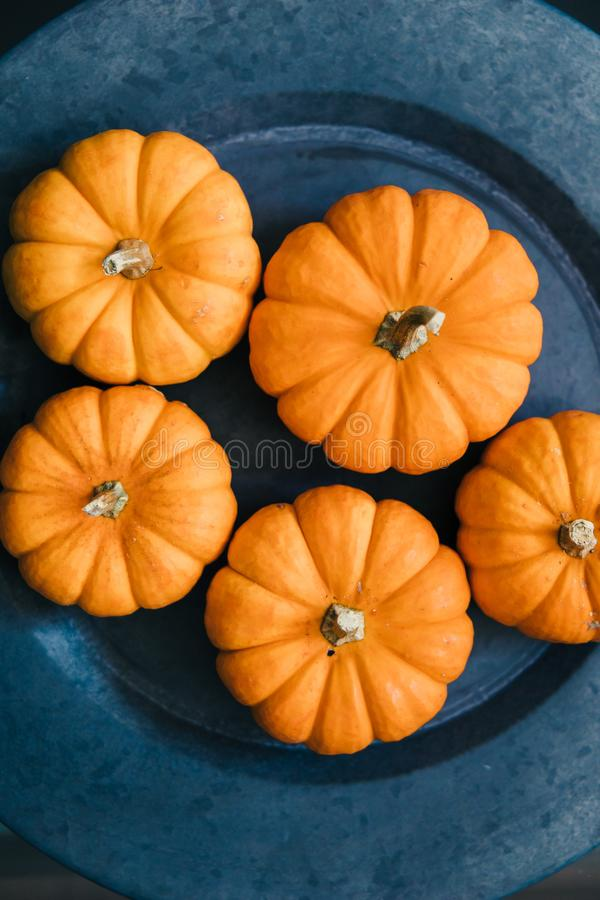 Miniature pumpkins on an aluminum plate charger. autumn fall holiday decor royalty free stock image