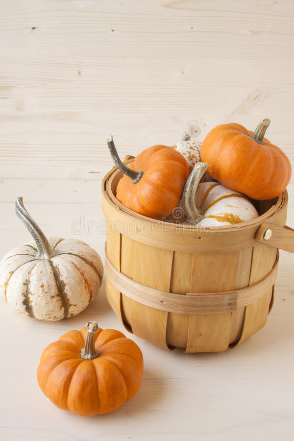 Miniature Pumpkins. Orange and white miniature pumpkins on a wooden background royalty free stock images