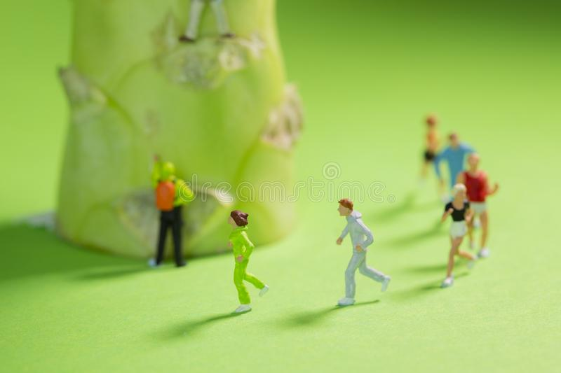 Miniature Runners jogging in a circle around a broccoli to train fitness and endurance stock photos