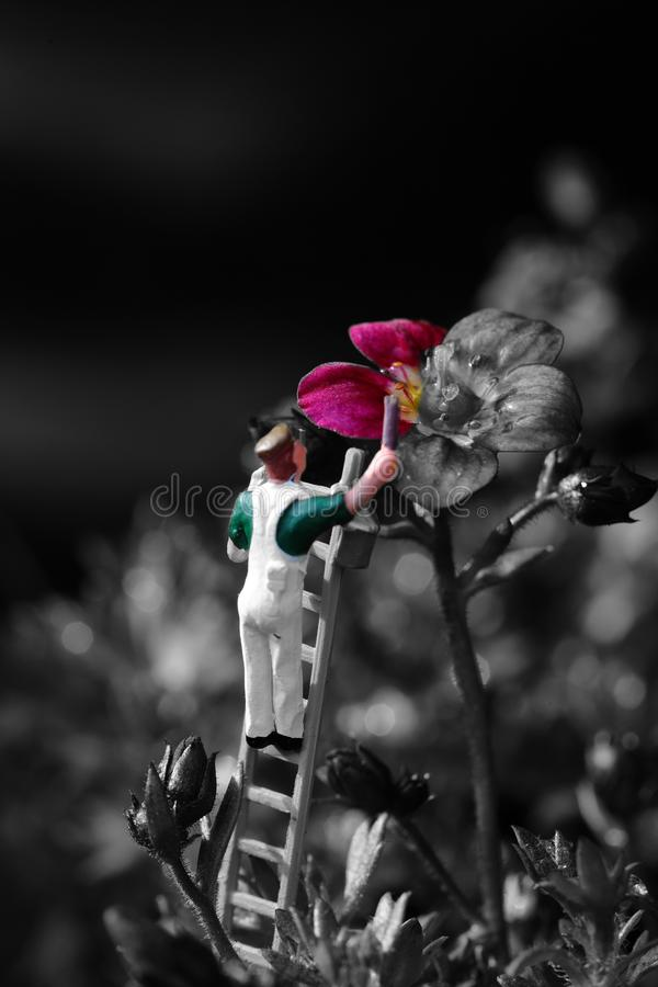 Miniature scale model painter decorator painting a Saxifraga Arendsii royalty free stock images