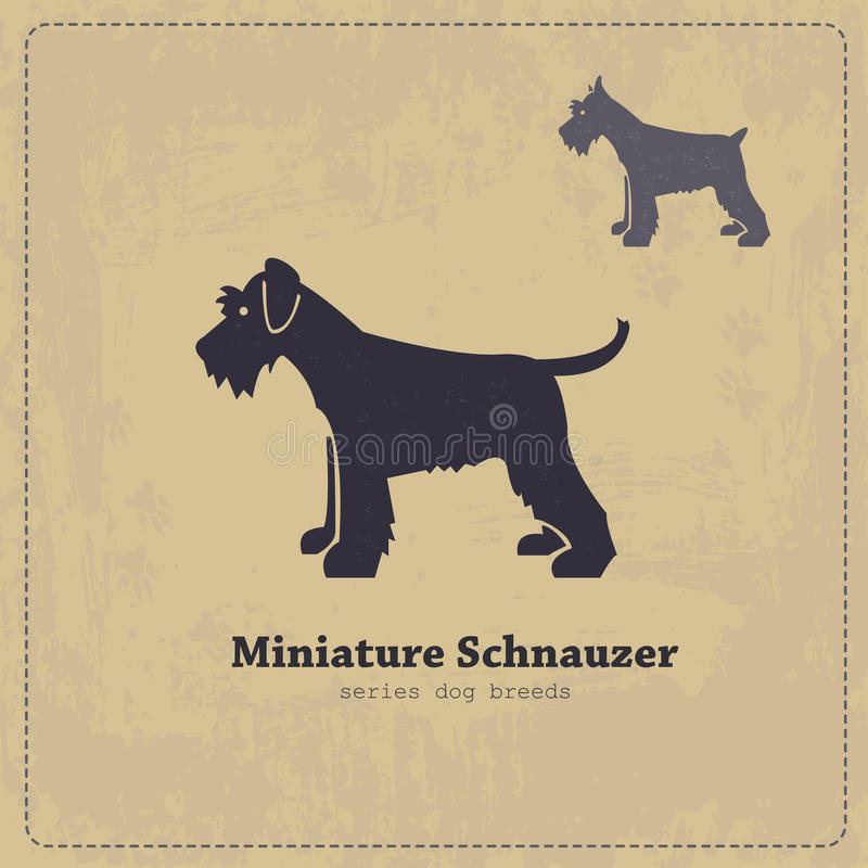 Schnauzer Silhouette stock vector  Illustration of