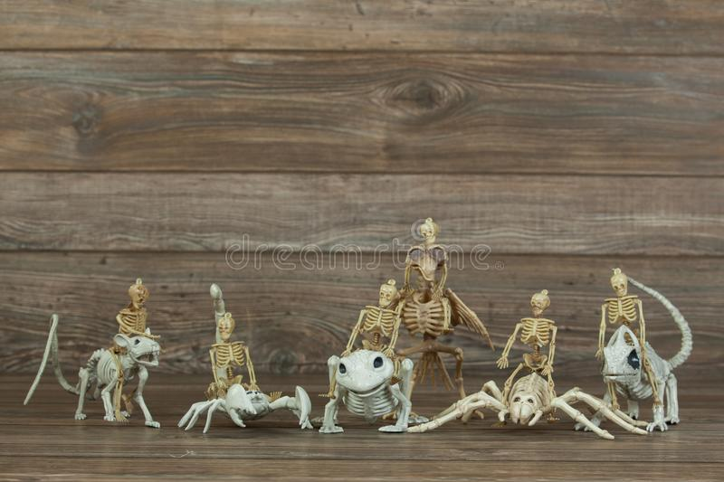 Miniature skeleton army on wood background stock images