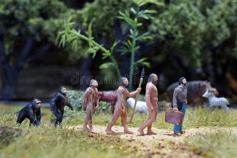 Miniature of Theory of evolution of man. Human development. stock photo