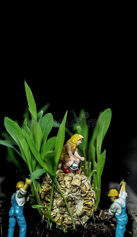 Miniature toy and new born with plant and tree. Growth and environmental. Concept stock photo