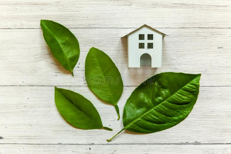 Toy House and green leaves. Miniature white toy model house with green leaves on wooden backgdrop. Eco Village, abstract environmental background. Real estate stock image