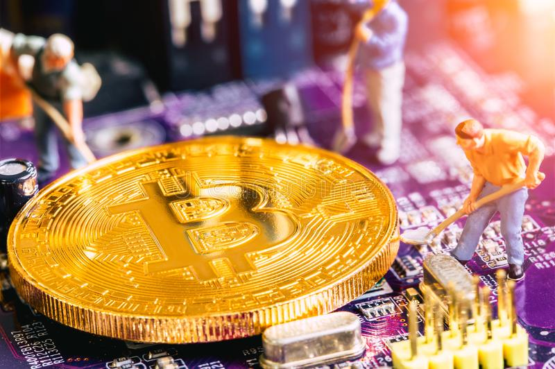 Miniature worker dig gold bitcoin miner. On electronic circuit board stock photos