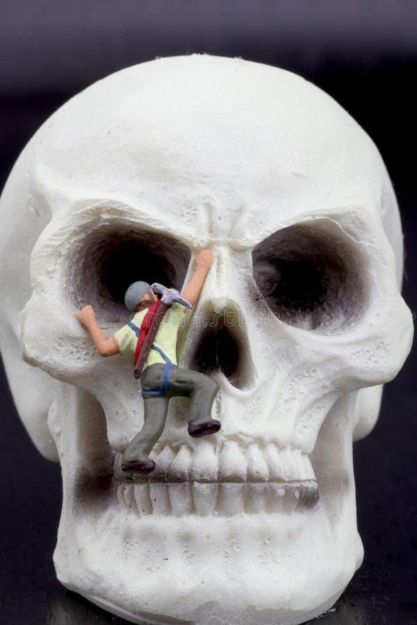 Miniaturowa figurka arywista na czaszce zdjęcie stock