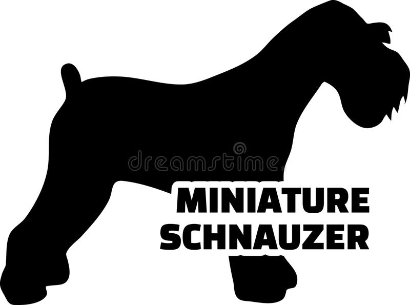 Miniaturowego Schnauzer sylwetki istny słowo ilustracja wektor