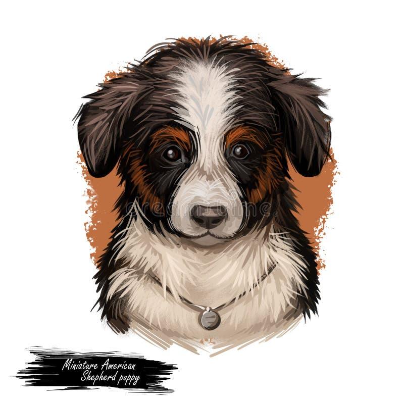 Miniaturowej Amerykańskiej bacy MAS psia purebred cyfrowa sztuka royalty ilustracja