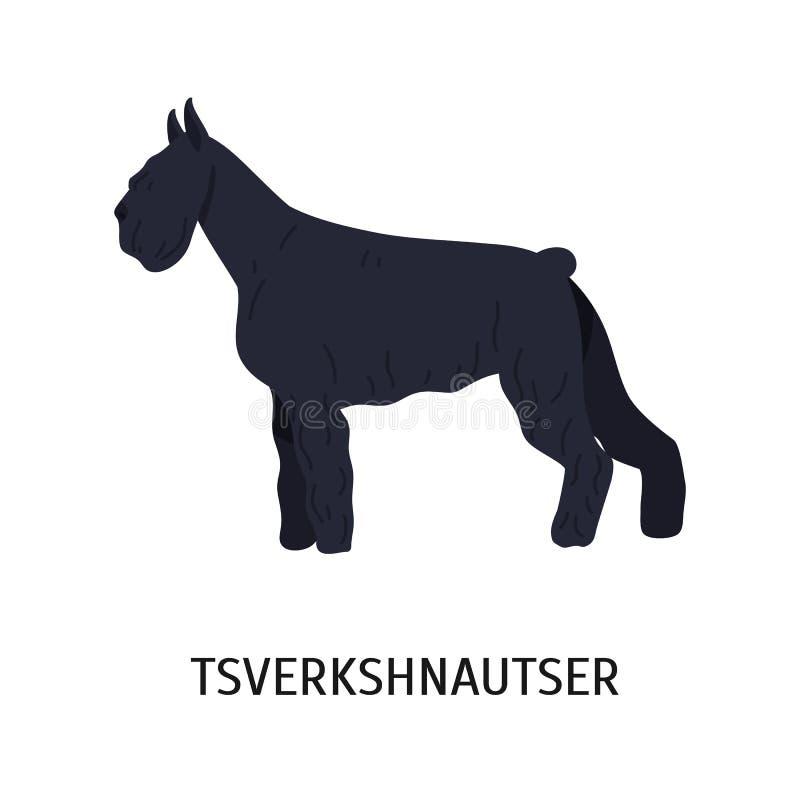 Miniaturowy Schnauzer lub Zwergschnauzer Mały kamrata pies odizolowywający na białym tle teriera typ Trakenu standard ilustracja wektor