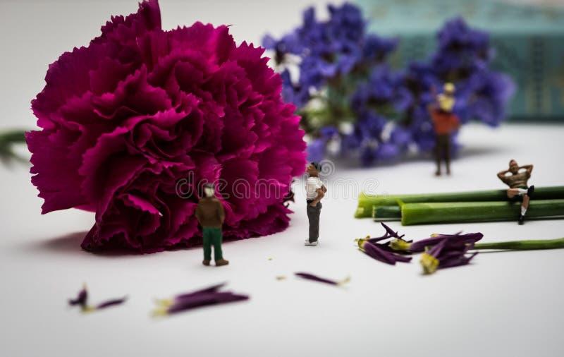 Miniaturzahlen, die eine Ansicht von Blumen genießen lizenzfreies stockfoto