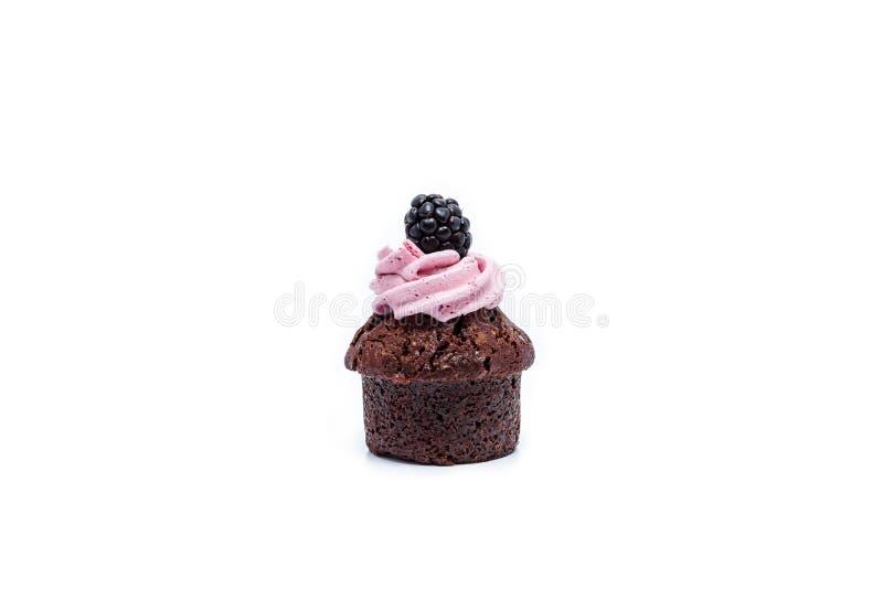 Miniatuur bosfruitdesserts stock afbeeldingen