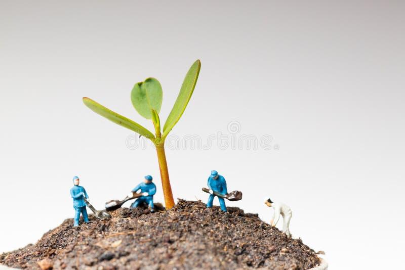 Miniatuurarbeider die met boom werken stock foto
