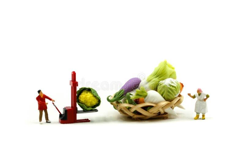 Miniatuurmensen: De Wifehousevrouw verkoopt het Landbouwbedrijfassortiment van Oogstproducten van verse vruchten en groentenmarkt stock afbeelding