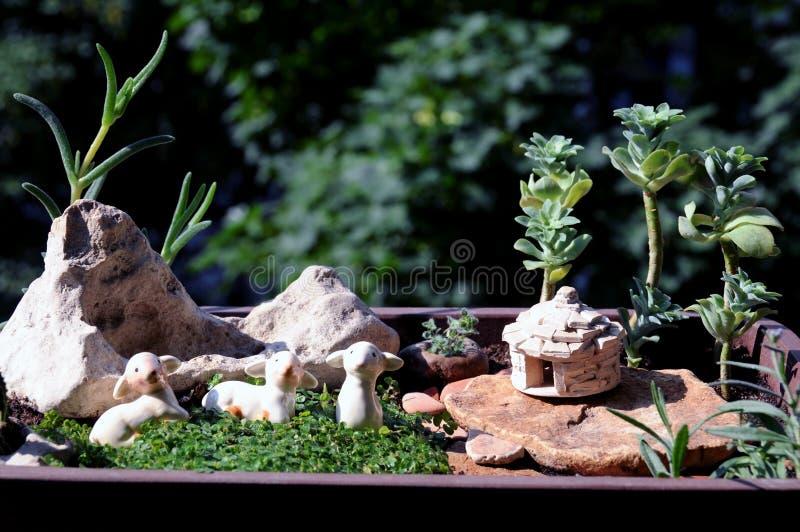 Miniatuurpottentuin stock foto's