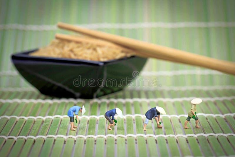 Miniatuurrijstlandbouwers op een bamboemat royalty-vrije stock foto's