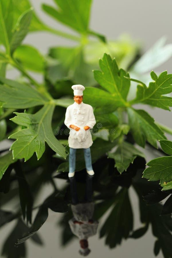 Miniatuurschaal modelchef-kok die zich met vlakke bladpeterselie bevinden royalty-vrije stock foto