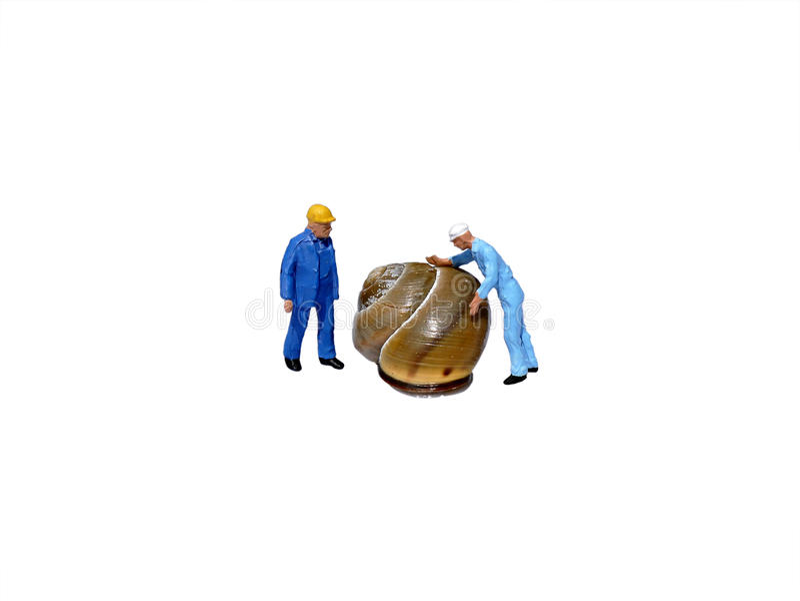 Miniatyrarbetare som kontrollerar snigelskalet som isoleras på vit royaltyfri bild
