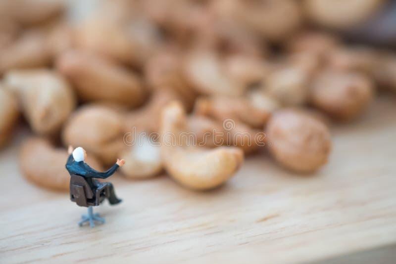 Miniatyrfolkaffärsman som väljer den bästa kvalitets- kasjun för export royaltyfri fotografi