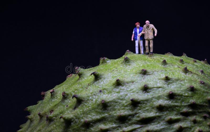 Miniatyrgamla människor på grön fruktyttersida Gamla par som går på grön textur royaltyfria foton