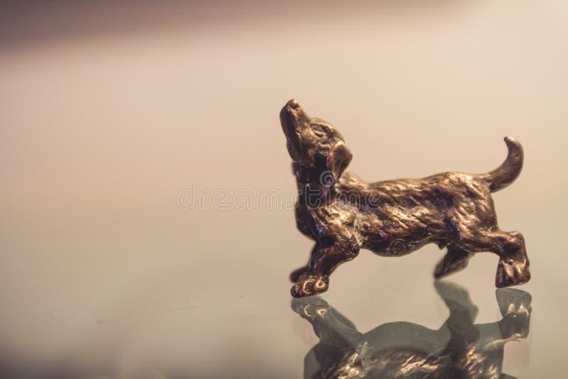 Miniatyrsilverhunddiagram arkivfoton