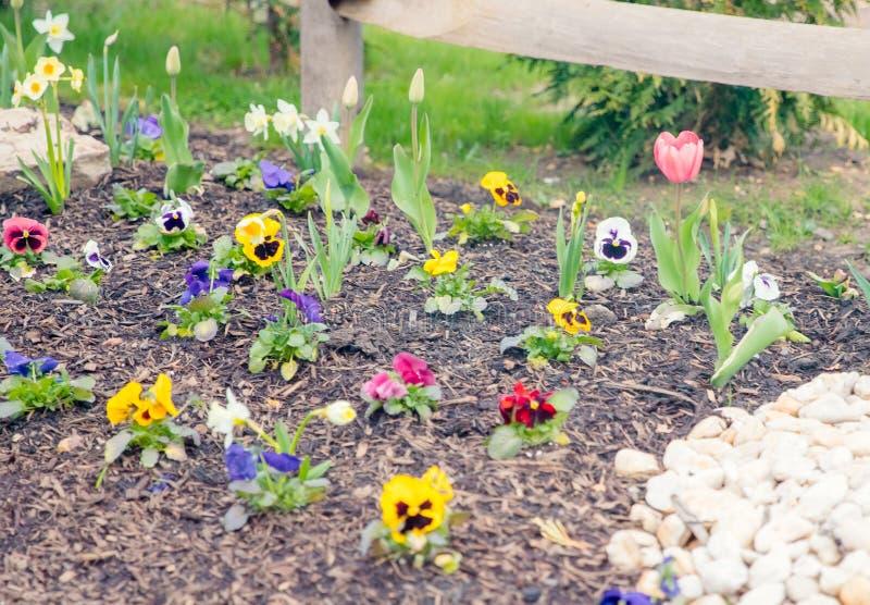 Miniatyrträdgård- och trädgårdsnäringhjälpmedel i tidig vår arkivbild