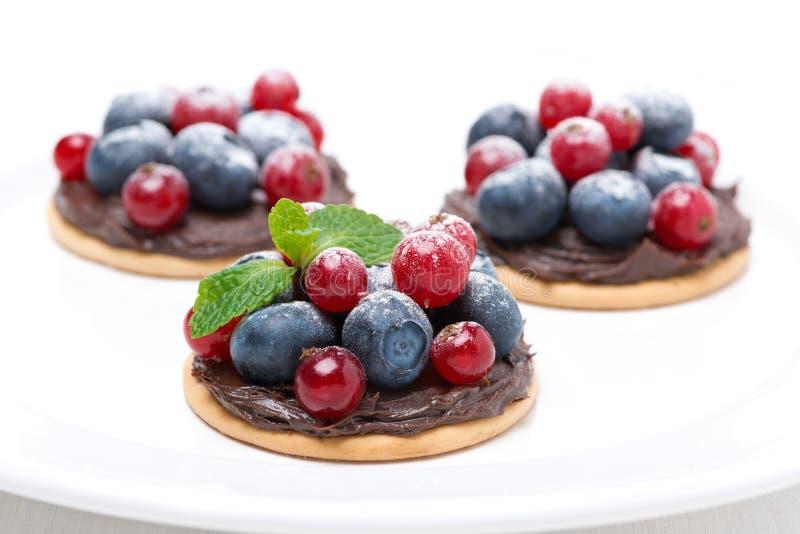 Minicakes met chocoladeroom en bessen op de plaat stock afbeelding