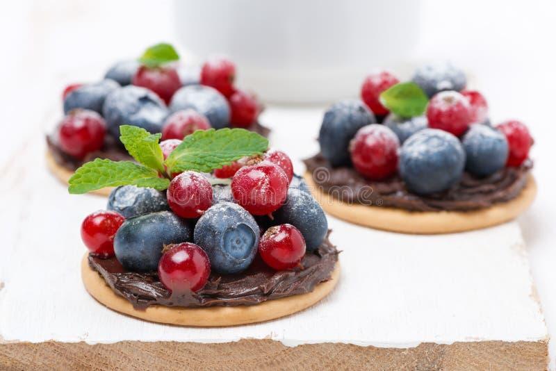 Minicakes met chocoladeroom en bessen op een witte raad royalty-vrije stock foto's