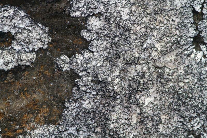 Miniera di sale cruda più vicina immagini stock libere da diritti