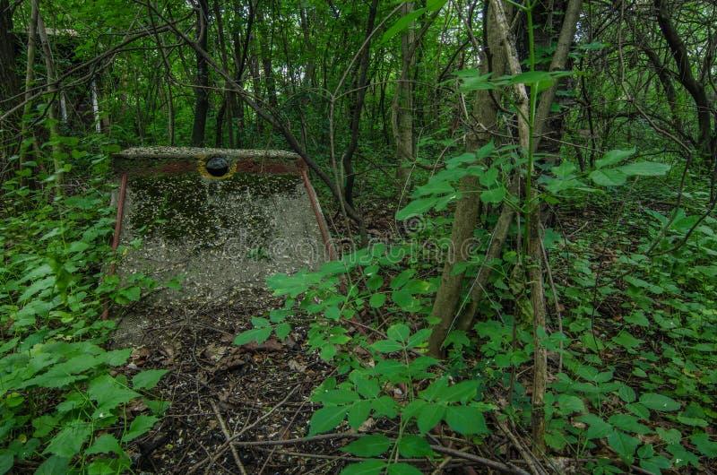 minigolf Kurs im Wald lizenzfreies stockfoto