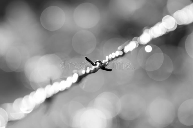 A minimal barbed wire stock photos