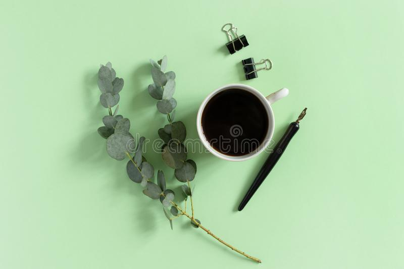 Minimal composition with mug of coffee, paper clips, calligraphy pen, eucalyptus branch. On a green pastel background stock photo