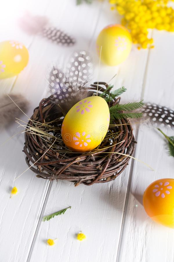 Minimal easter composition. Yellow decorative chicken egg in the nest. Mimosa flowers and feathers. Place for text royalty free stock photography