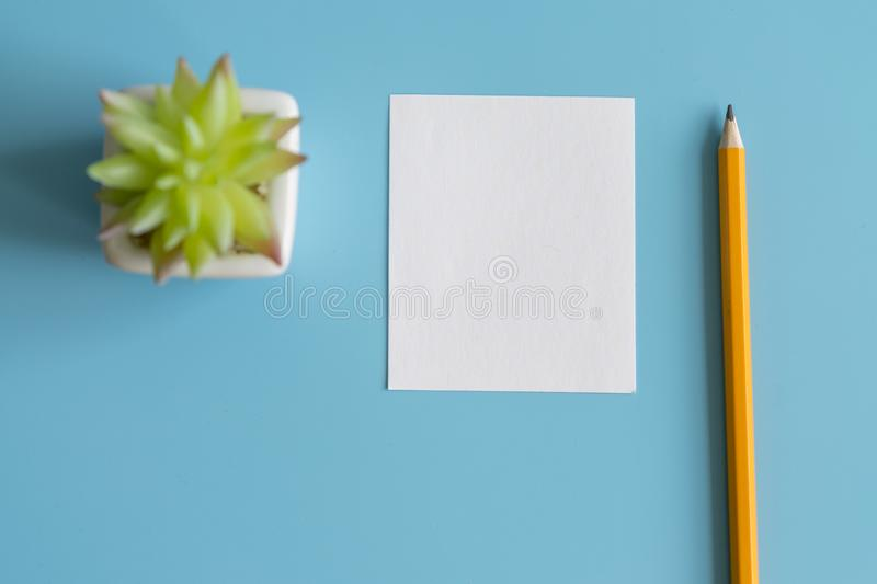 Minimal flat lay : notepad , pencil , cactus , on light blue pastel background , top view , work space. copy space stock image
