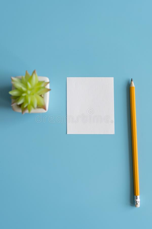 Minimal flat lay : notepad , pencil , cactus , on light blue pastel background , top view , work space. copy space. vertical photo.  royalty free stock photo