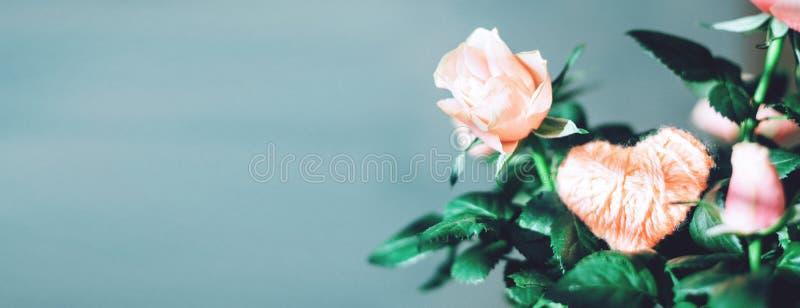 Minimale moderne Valentinsgrußtagesgrußkarte, Fahne, Modell mit Kopienraum Korallenrote Rosen mit grünen Blättern, rosa weißes He lizenzfreies stockbild