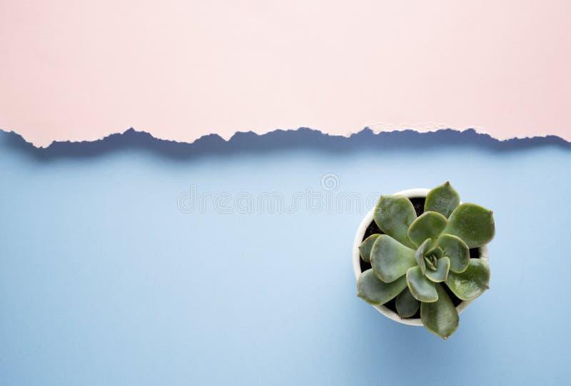 minimalism immagini stock libere da diritti