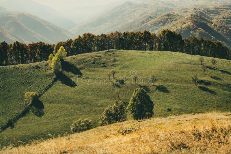Minimalism Enastående landskap för säsongsbetonad bakgrund eller tapeter royaltyfri bild