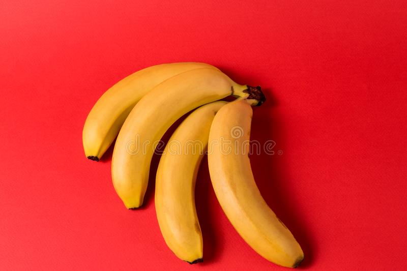 Minimalism style. Fruit pattern with yellow ripe banana fruit over bright red background. Creative minimalism concept. Unexpected concept. Flat lay view of stock images