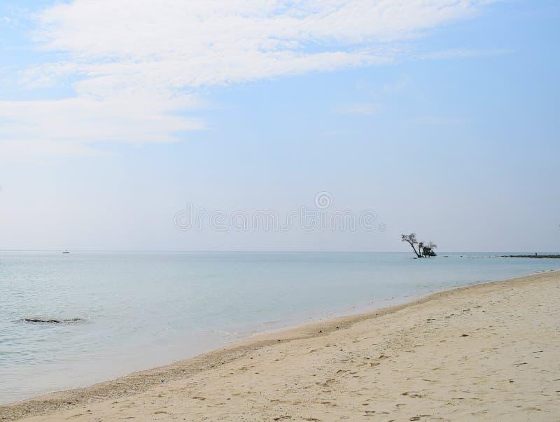 Minimalismo, isolamento & isolamento - imensidade do oceano com uma árvore na água em uma distância em Sandy Beach branco - fundo fotografia de stock