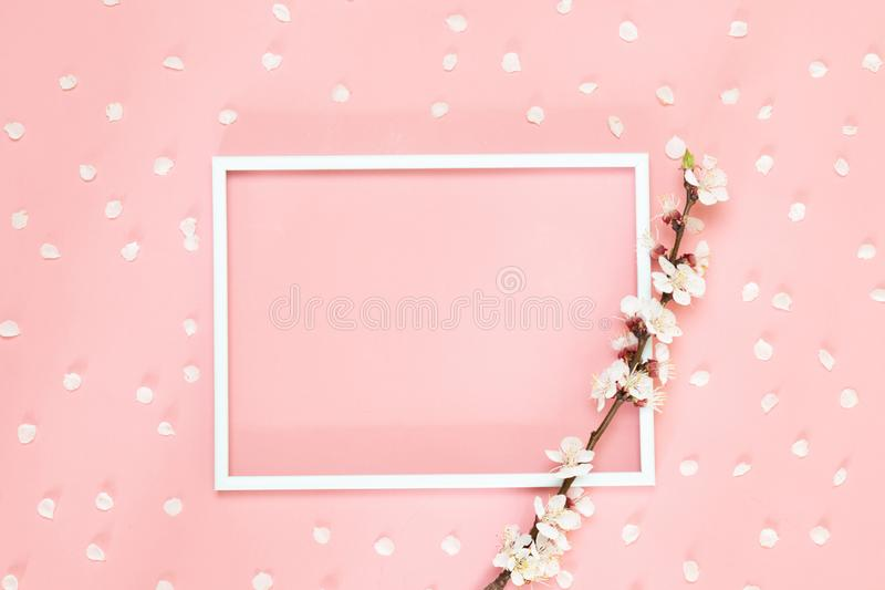 Minimalist board mockup with cherry branch. Fresh branches of cherry with frame mockup for special offers as advertising or other. Ideas. Empty place for stock photo