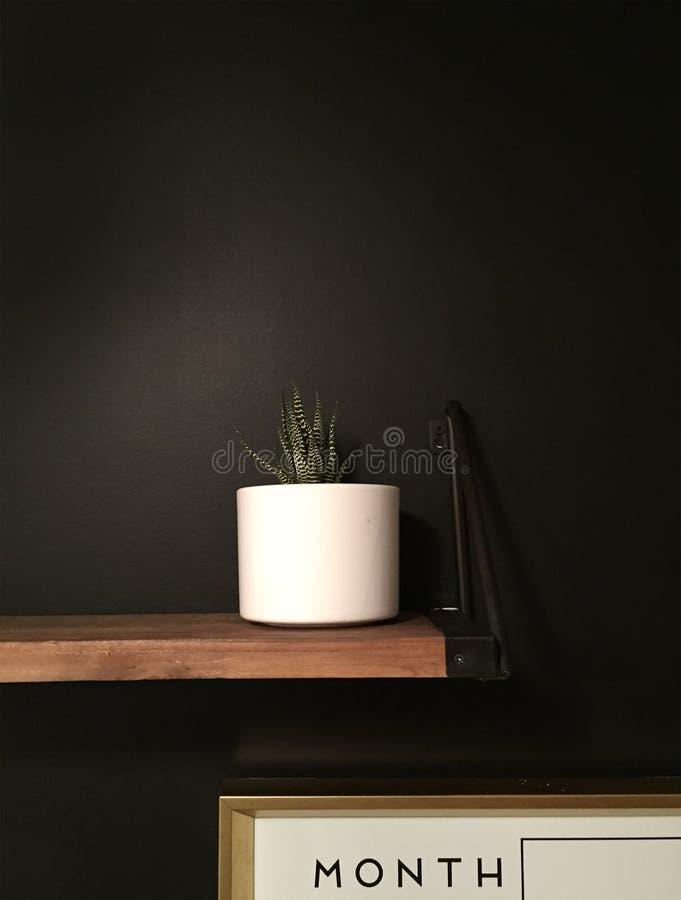 Minimalist Succulent plant on black chalkboard wall. Paint. Wood shelf, gold framed calendar organizer. Command station. Modern clean design and decor stock photography